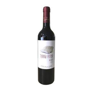 Terra Fiter 2012 · vino tinto (75cl · 14,5%)